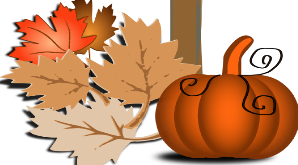 Fall leaves and pumpkin graphic.